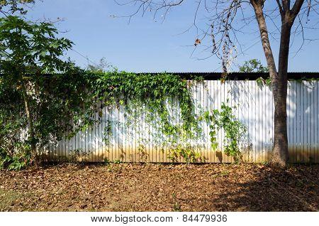 White Wooden Fence In Garden