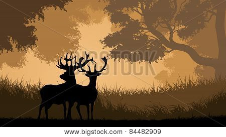 Horizontal Illustration Of Wild Animals In Wood.