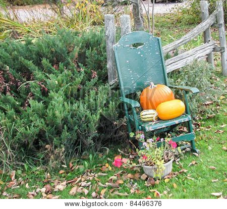 Autumn fruit ready for Halloween