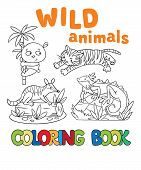 picture of panda  - Coloring book or coloring picture with wild animals - JPG