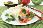 pic of glass noodles  - Rice paper stuffed with glass noodles carrots peppers and cilantro - JPG