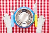 stock photo of knife  - empty dog food bowl with knife and fork on tableclothpaws of a dog - JPG