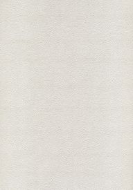 stock photo of dapple-grey  - Background of white and grey paper texture - JPG