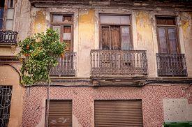 stock photo of valencia-orange  - Old houses and ornamental orange trees in Valencia Cabanyal district - JPG