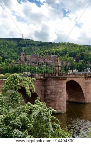 View of Heidelberg Castle in Lush Green Hillside Overlooking Quaint Town of Heidelberg, with Old Bridge in Foreground, Baden-Wurttemberg, Germany