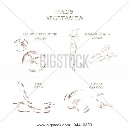 Graphic Vegetables Illustration