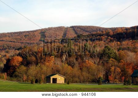 Follaje de otoño 09