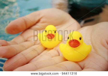 Yellow Rubber Duck In Hands At Swimming Pool.