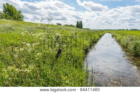 Ditch In A Rural Landscape