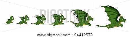 Dragon Growth Cartoon