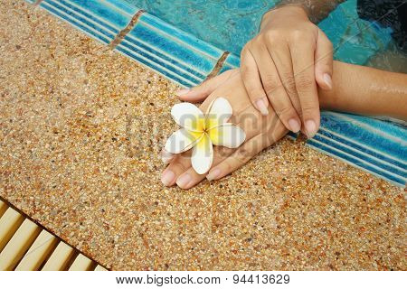 Woman's Hand With Plumeria Flower At Swimming Pool.