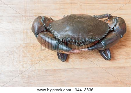 Crab On The Wooden Floor.
