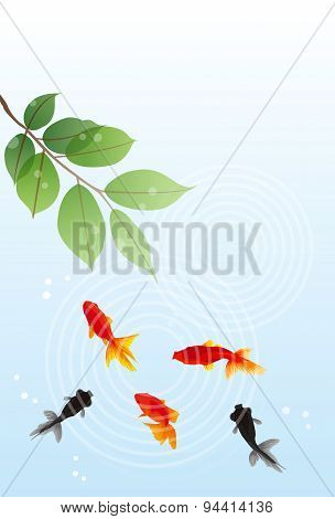 Goldfish Summer Greeting Card