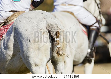 Polo Horses Riders Detail Abstract
