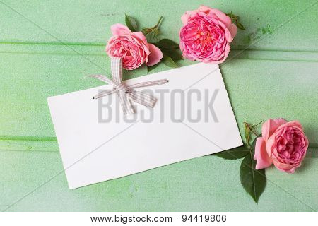 Sweet  Pink  Roses  And Empty Tag