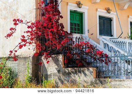 part of house in Corfu with bougainvillaea.