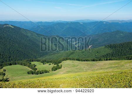 Herd Of Sheep On Pasture In Beautiful Spring Ukrainian Mountains