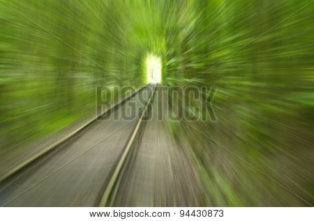 Abstract Image Of Speed Motion By Rail Among Trees To The Light
