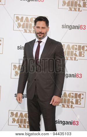LOS ANGELES - JUN 25:  Joe Manganiello at the