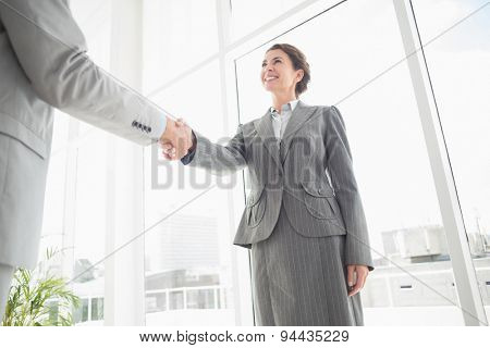 Smiling businesswoman shaking hand with a businessman in an office