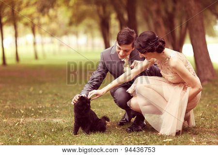 Couple Playing With Black Cat