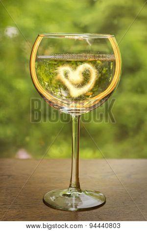 White Wine Celebration