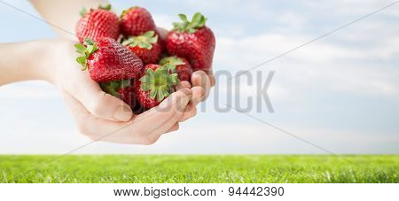 healthy eating, dieting, vegetarian food and people concept - close up of woman hands holding ripe strawberries over grass and blue sky background