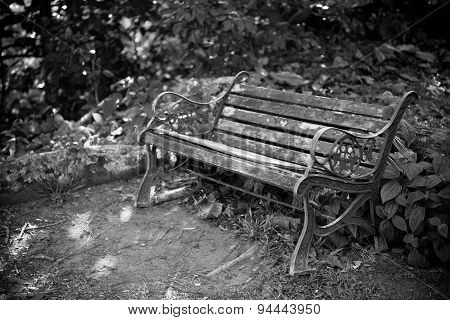 Old Bench In A Forest