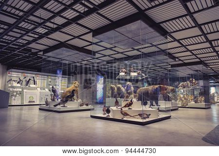 MOSCOW, RUSSIA - JUBE 3, 2015: State Darwin Museum of Natural History, Moscow, Russia.