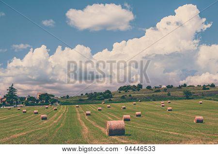 Rural Landscape, France