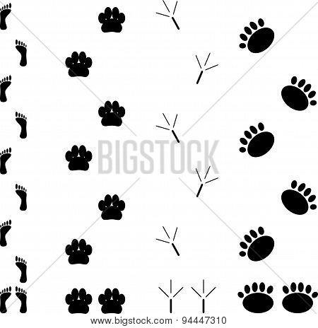 Foot Print Set