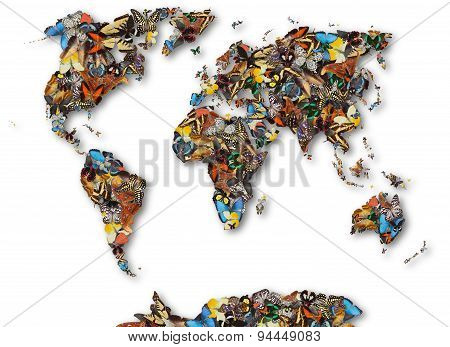 Map Of The World Of Butterflies.