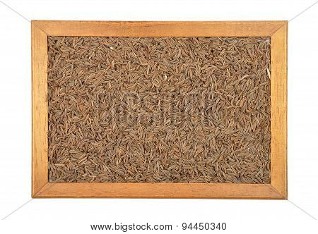 Caraway Seeds In Frame