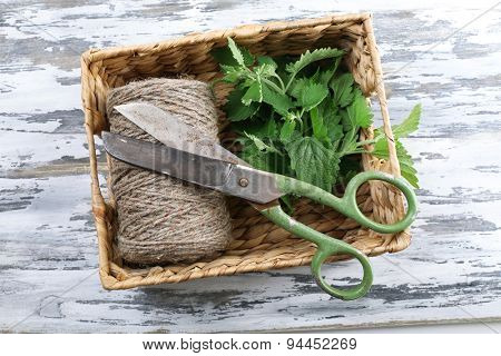 Leaves of lemon balm with rope and scissors on wooden table, top view
