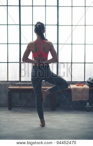 Rear View Of Woman Doing Yoga Tree Pose With Hands Behind Back