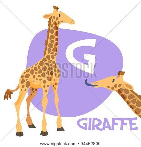 Funny cartoon animals vector alphabet letter set for kids . G is giraffe