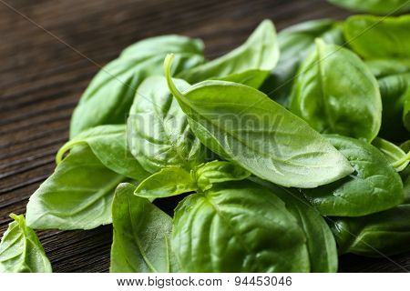Green fresh basil on table close up