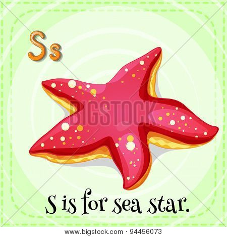 Flashcard letter S is sea star