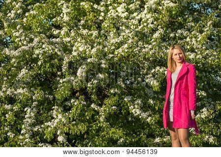 Young beautiful woman in a blooming gardens