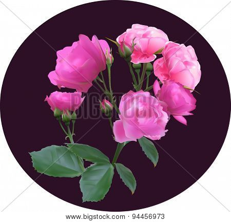 illustration with pink rose decoration decoration