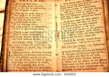 Parchment Book