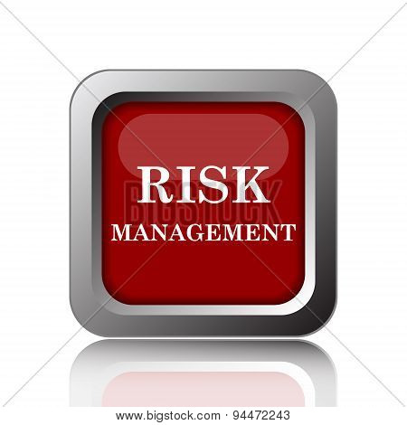 Risk Management Icon