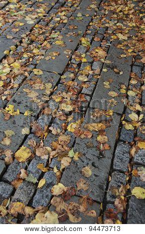 Cobbles In Autumn