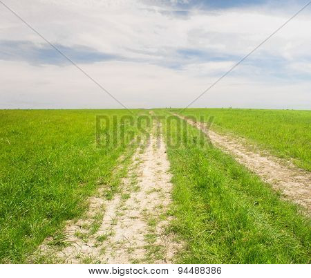 Summer Lawn Road and Nobody
