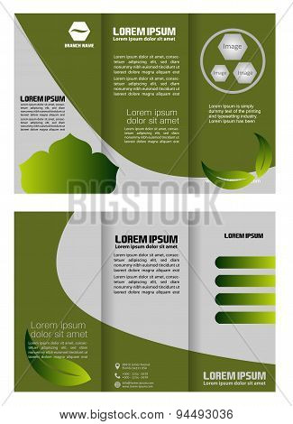 Brochure folder leaflet bio eco green leaf nature abstract element