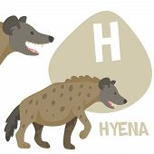 picture of hyenas  - Funny cartoon animals vector alphabet letter for kids from A to Z - JPG