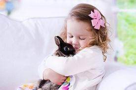 image of hug  - Child playing with a real rabbit - JPG