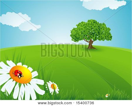 Summer time. Vector background.