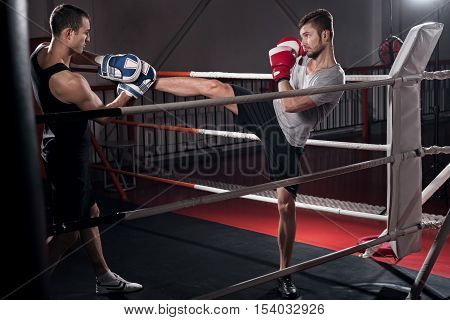 Strait hook. Concentrated young bearded guy standing on ring and working on kick boxing hook together with his trainer in special pad.