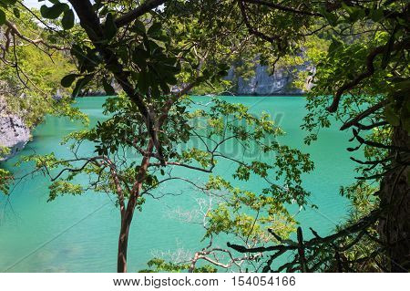 The emerald lake in the Ko Angthong archipelago, Thailand